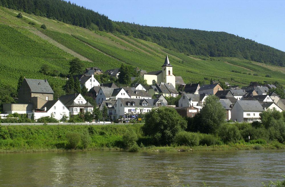 Burg An Der Mosel 6 Buchstaben
