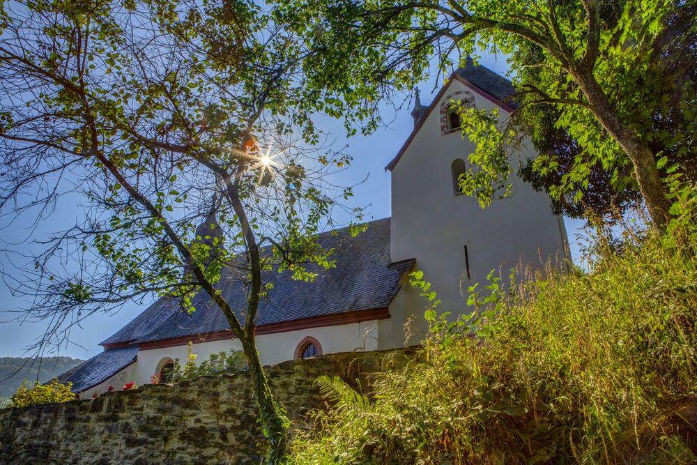 Sankt Aldegund Kaltwintergarten